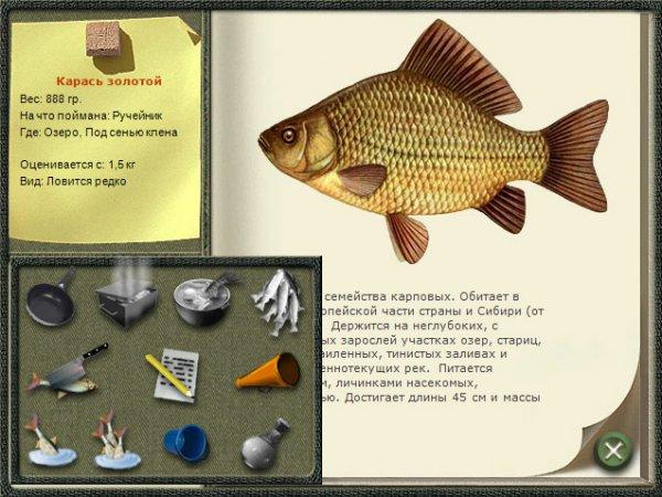 Русская рыбалка 3 5 деньги